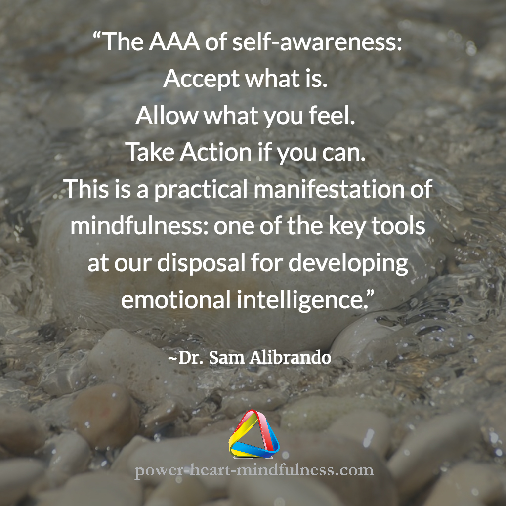 Mindfulness for Emotional Intelligence